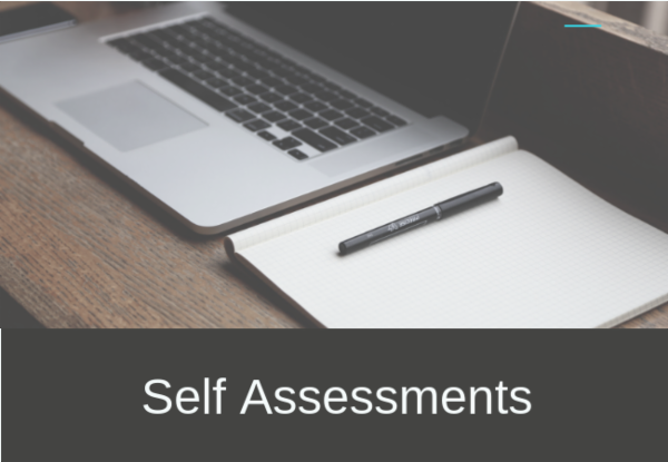 Self Assessment Security Exams cover