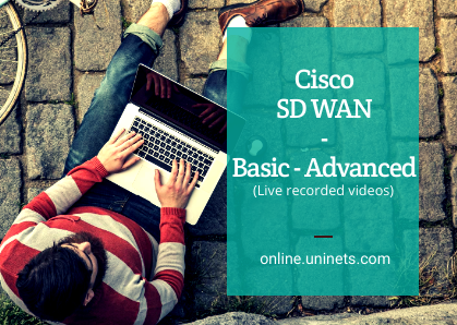 Get Expertise in Advance Cisco SD WAN Viptela Course cover